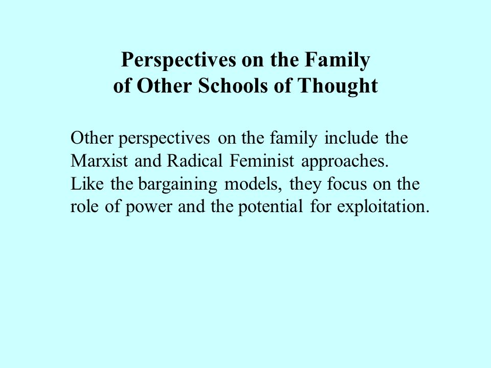 Perspectives on the Family of Other Schools of Thought Other perspectives on the family include the Marxist and Radical Feminist approaches.