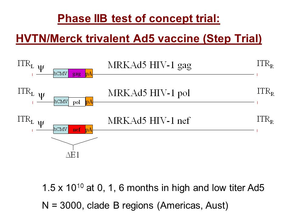 Phase IIB test of concept trial: HVTN/Merck trivalent Ad5 vaccine (Step Trial) 1.5 x 10 10 at 0, 1, 6 months in high and low titer Ad5 N = 3000, clade