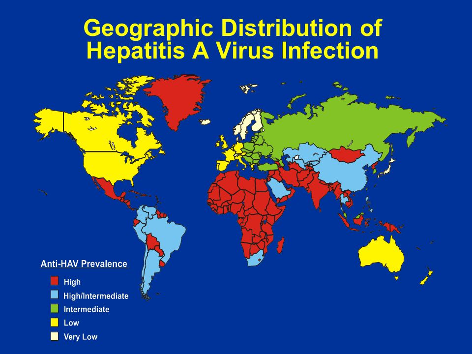 Geographic Distribution of Hepatitis A Virus Infection