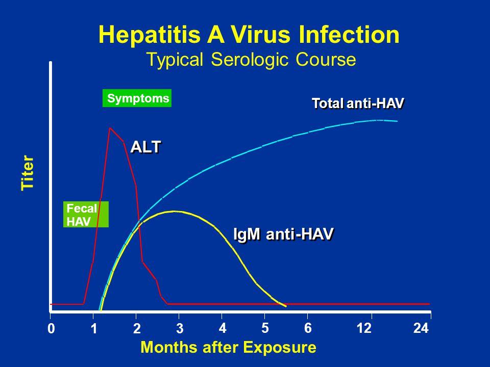 Fecal HAV Symptoms ALT IgM anti-HAV Total anti-HAV Months after Exposure Titer 0123 4561224 Hepatitis A Virus Infection Typical Serologic Course