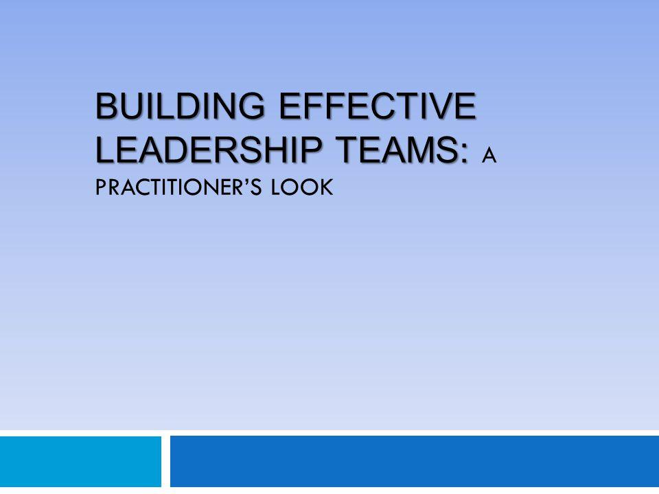BUILDING EFFECTIVE LEADERSHIP TEAMS: BUILDING EFFECTIVE LEADERSHIP TEAMS: A PRACTITIONER'S LOOK