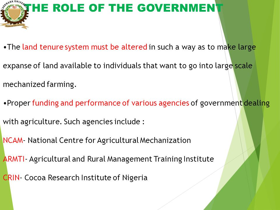 THE ROLE OF THE GOVERNMENT The land tenure system must be altered in such a way as to make large expanse of land available to individuals that want to go into large scale mechanized farming.