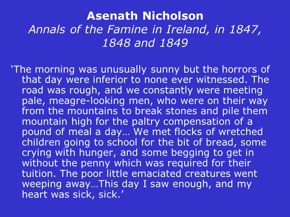 Asenath Nicholson Annals of the Famine in Ireland, in 1847, 1848 and 1849 'The morning was unusually sunny but the horrors of that day were inferior t
