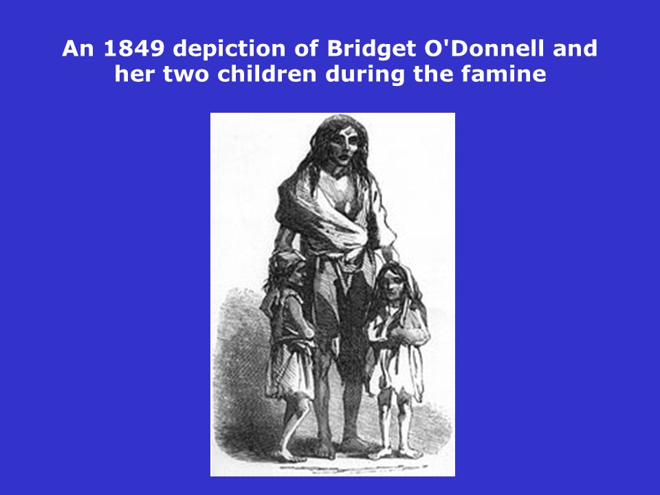 An 1849 depiction of Bridget O'Donnell and her two children during the famine