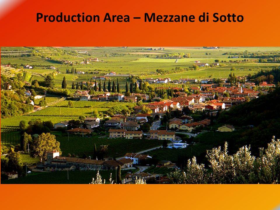 Production Area – Mezzane di Sotto