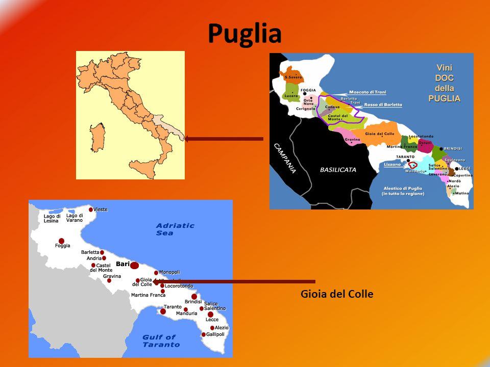 Puglia Gioia del Colle