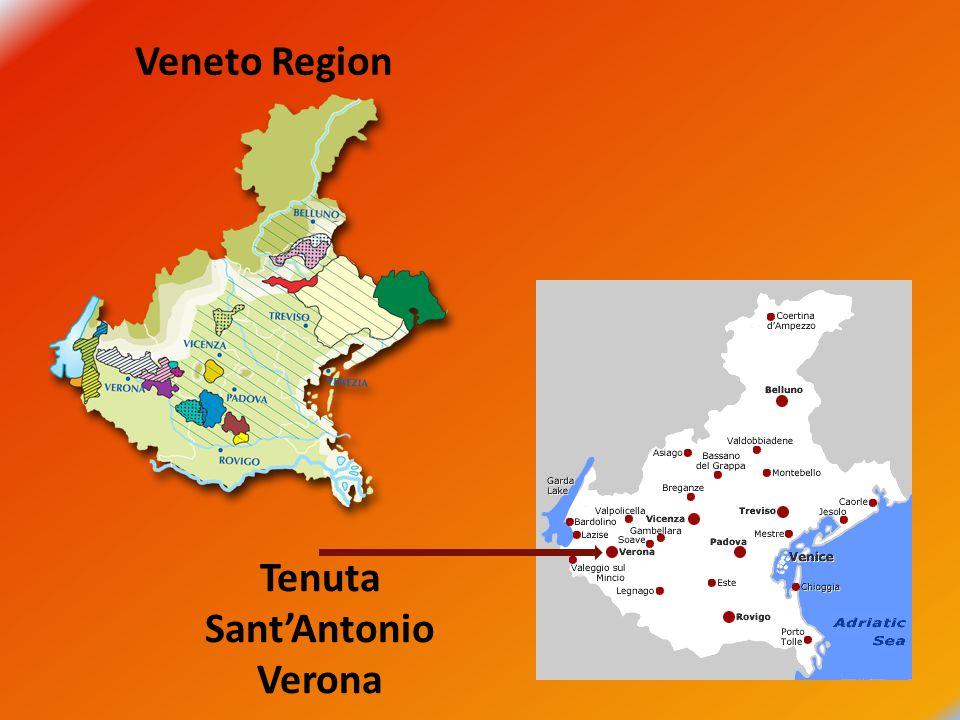 Veneto Region Tenuta Sant'Antonio Verona