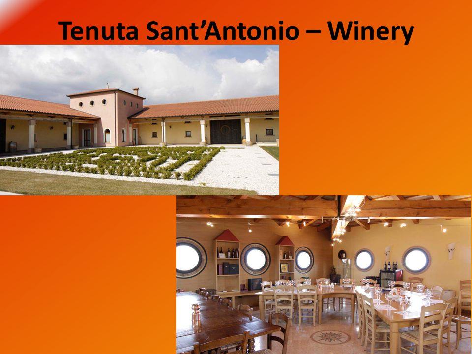 Tenuta Sant'Antonio – Winery