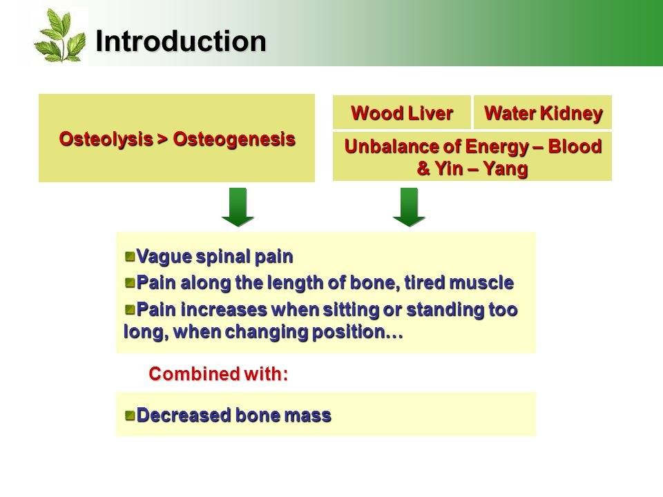 Introduction Wood Liver Water Kidney Unbalance of Energy – Blood & Yin – Yang Osteolysis > Osteogenesis Vague spinal pain Pain along the length of bone, tired muscle Pain increases when sitting or standing too long, when changing position… Decreased bone mass Combined with: