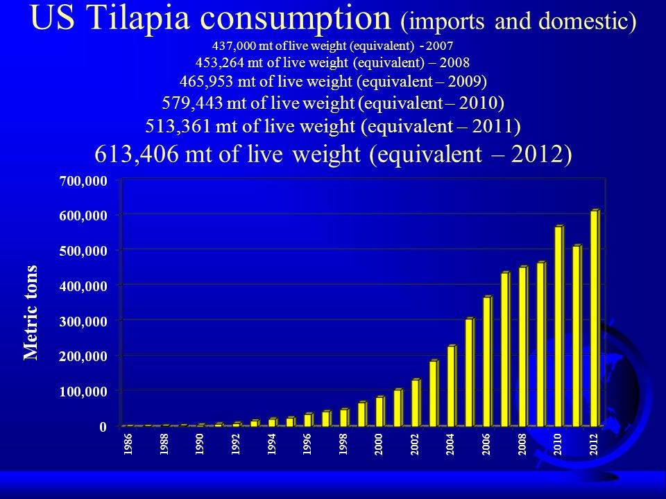 US Tilapia consumption (imports and domestic) 437,000 mt of live weight (equivalent) - 2007 453,264 mt of live weight (equivalent) – 2008 465,953 mt of live weight (equivalent – 2009) 579,443 mt of live weight (equivalent – 2010) 513,361 mt of live weight (equivalent – 2011) 613,406 mt of live weight (equivalent – 2012)