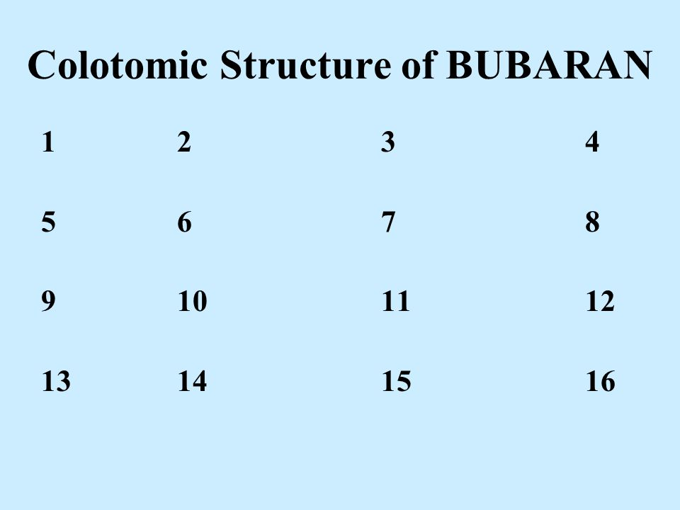Colotomic Structure of BUBARAN 1234 5678 9101112 13141516