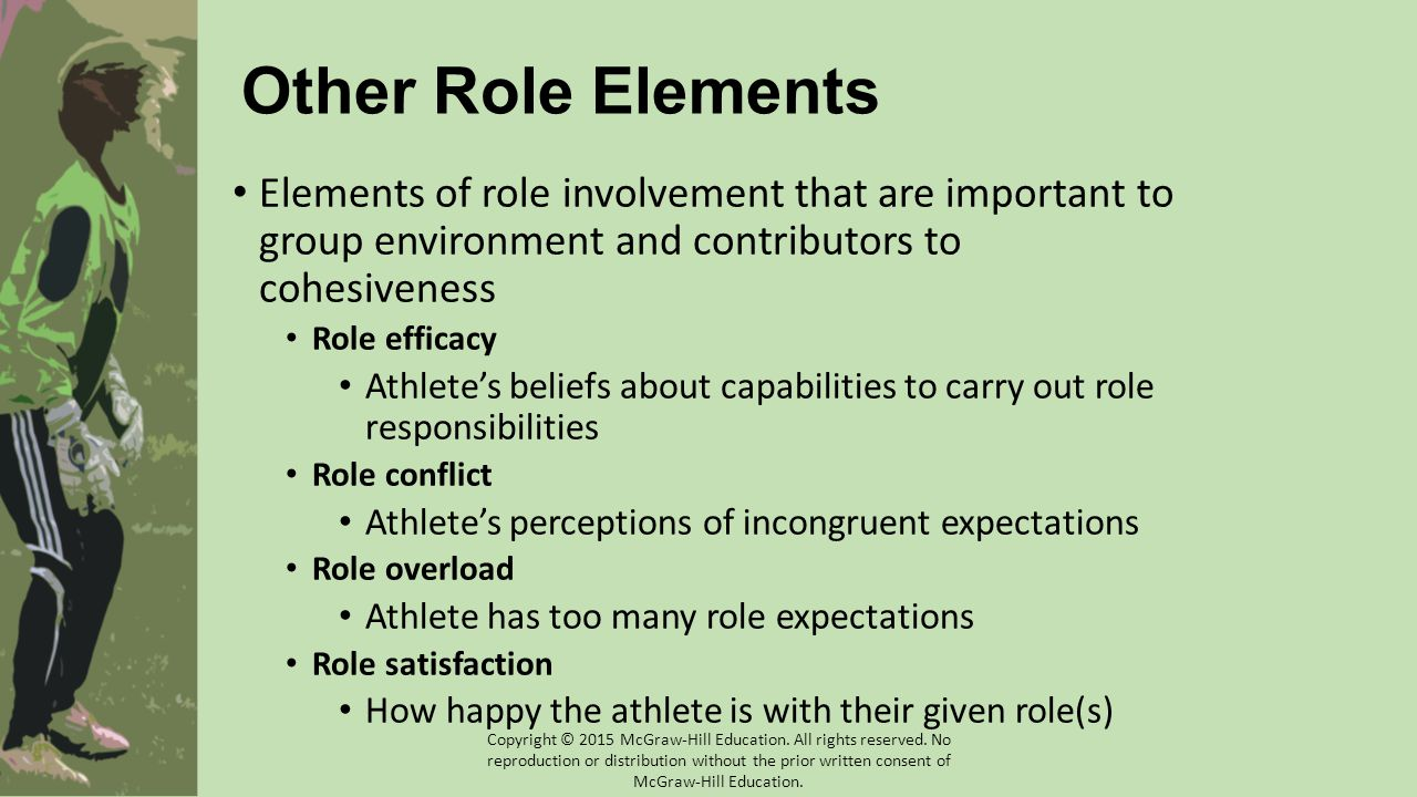 Other Role Elements Elements of role involvement that are important to group environment and contributors to cohesiveness Role efficacy Athlete's beli