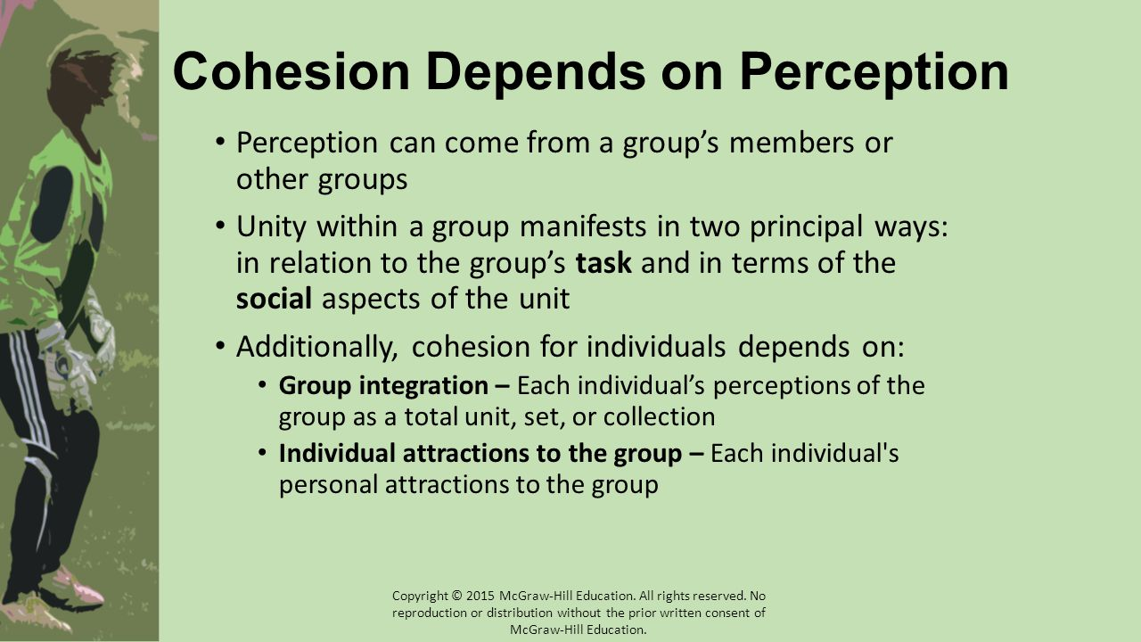 Cohesion Depends on Perception Perception can come from a group's members or other groups Unity within a group manifests in two principal ways: in rel