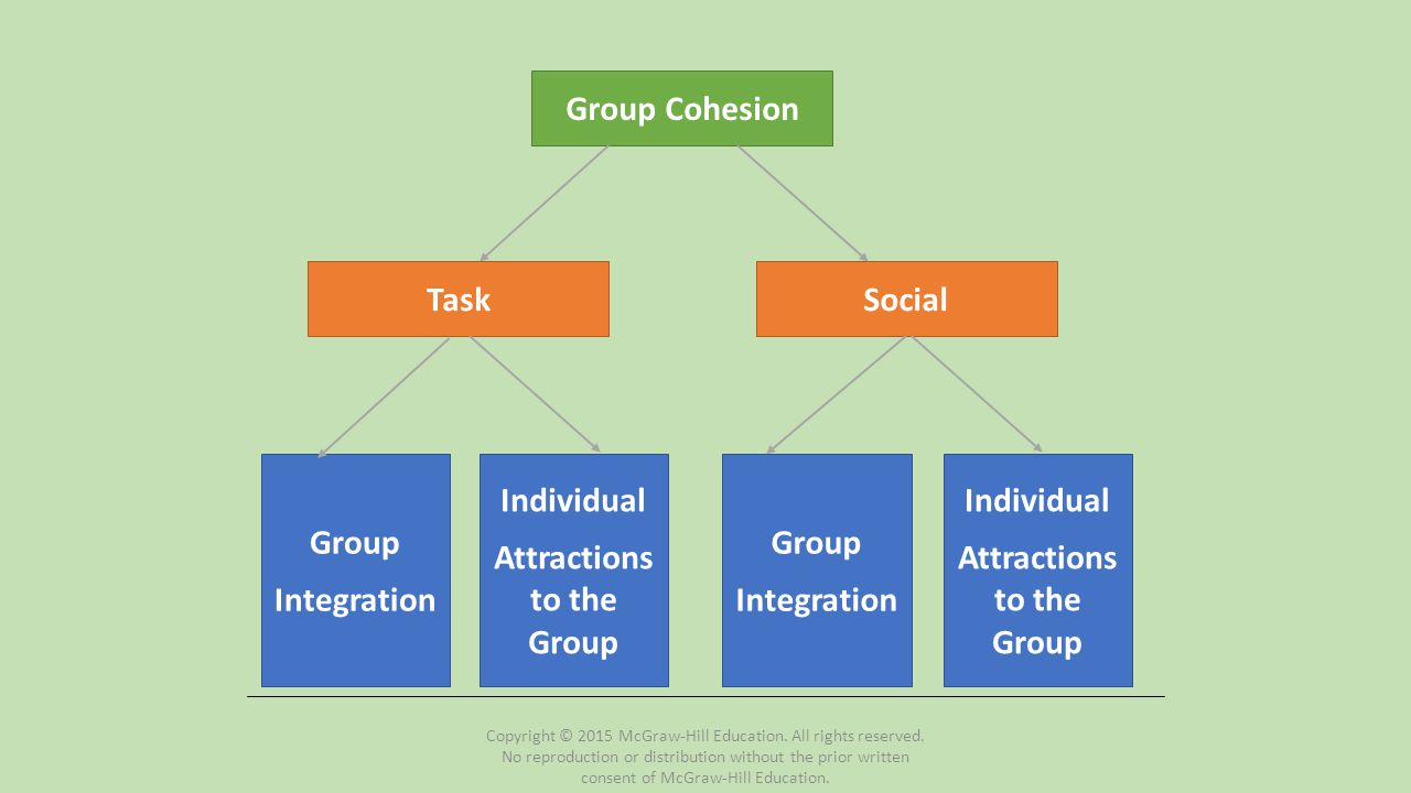 Norms (cont.) Four contexts in which norms exist Competition Practice Off-season Socially Important norms within those contexts: Put maximum effort toward task Support each other Continue training and maintain contact Attend social events Respect for each other Copyright © 2015 McGraw-Hill Education.