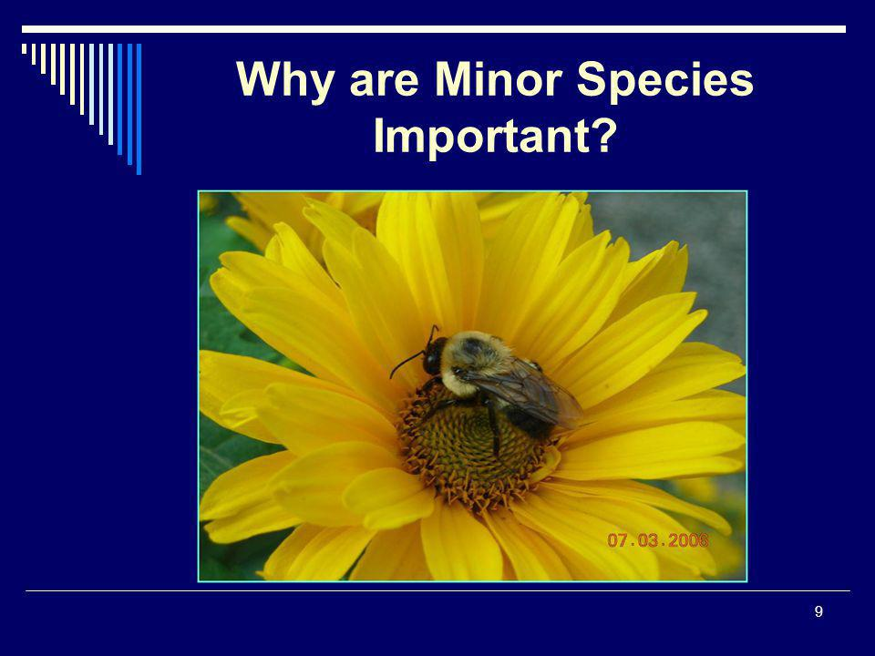 9 Why are Minor Species Important