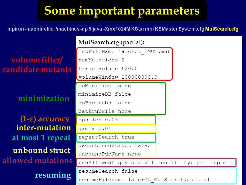 Some important parameters mpirun -machinefile./machines -np 5 java -Xmx1024M KStar mpi KSMaster System.cfg MutSearch.cfg MutSearch.cfg (partial) : mutFileName 1amuFCL_2MUT.mut numMutations 2 targetVolume 620.0 volumeWindow 100000000.0 doMinimize false minimizeBB false doBackrubs false backrubFile none epsilon 0.03 gamma 0.01 repeatSearch true useUnboundStruct false unboundPdbName none resAllowed0 gly ala val leu ile tyr phe trp met resumeSearch false resumeFilename 1amuFCL_MutSearch.partial volume filter/ candidate mutants minimization inter-mutation allowed mutations resuming (1-ε) accuracy at most 1 repeat unbound struct