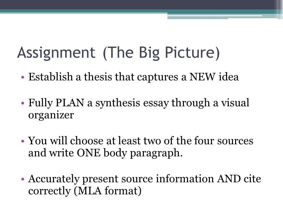 Assignment(The Big Picture) Establish a thesis that captures a NEW idea Fully PLAN a synthesis essay through a visual organizer You will choose at lea