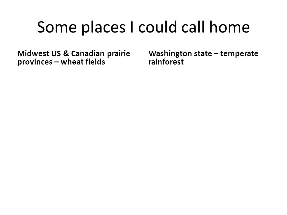 Some places I could call home Midwest US & Canadian prairie provinces – wheat fields Washington state – temperate rainforest