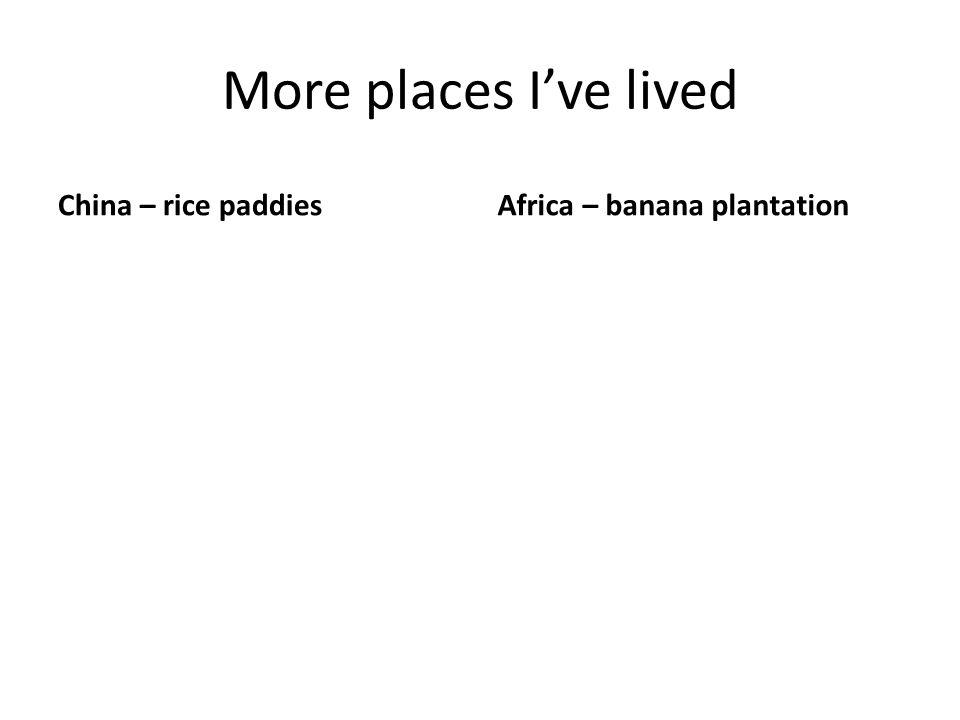 More places I've lived China – rice paddiesAfrica – banana plantation
