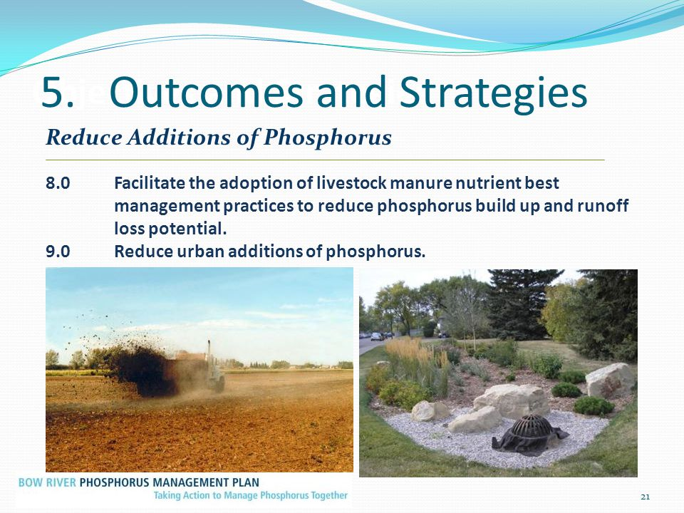 Objectives and Strategies 21 Reduce Additions of Phosphorus 8.0Facilitate the adoption of livestock manure nutrient best management practices to reduc