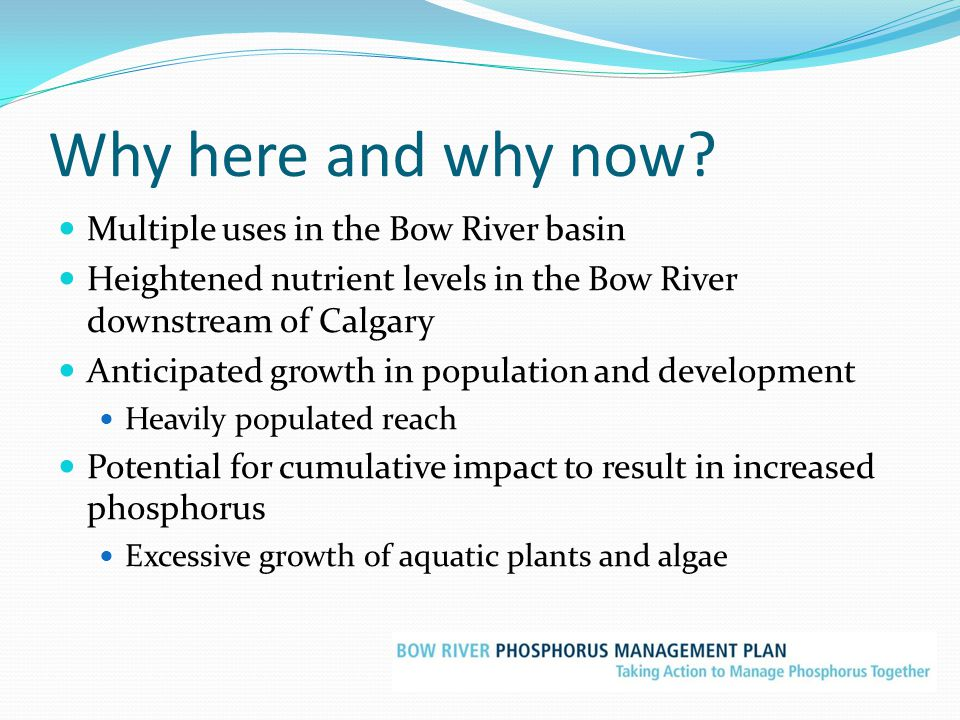 Why here and why now? Multiple uses in the Bow River basin Heightened nutrient levels in the Bow River downstream of Calgary Anticipated growth in pop
