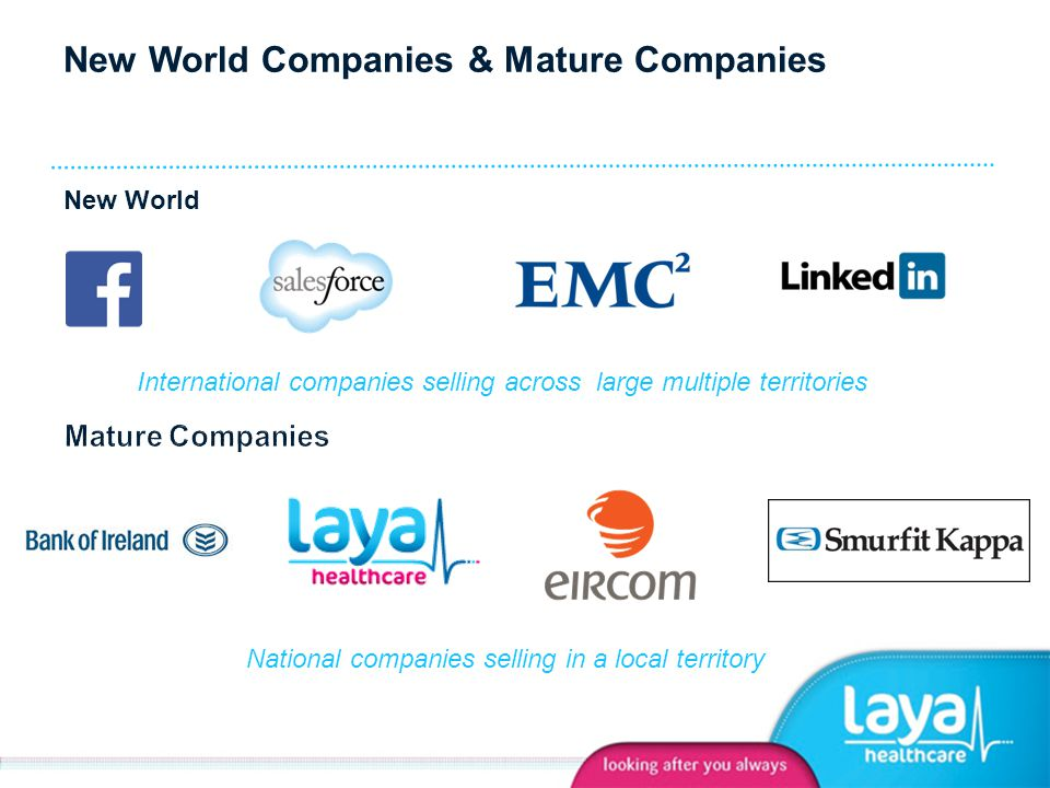 New World Companies & Mature Companies International companies selling across large multiple territories National companies selling in a local territory New World