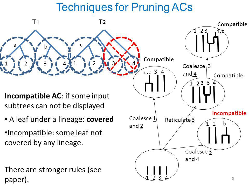 Techniques for Pruning ACs 1 1 2 2 3 3 4 4 T1T1 1 1 2 2 3 3 4 4 T2T2 a a b b c c Compatible Coalesce 1 and 2 Incompatible Coalesce 3 and 4 Incompatible AC: if some input subtrees can not be displayed A leaf under a lineage: covered Incompatible: some leaf not covered by any lineage.