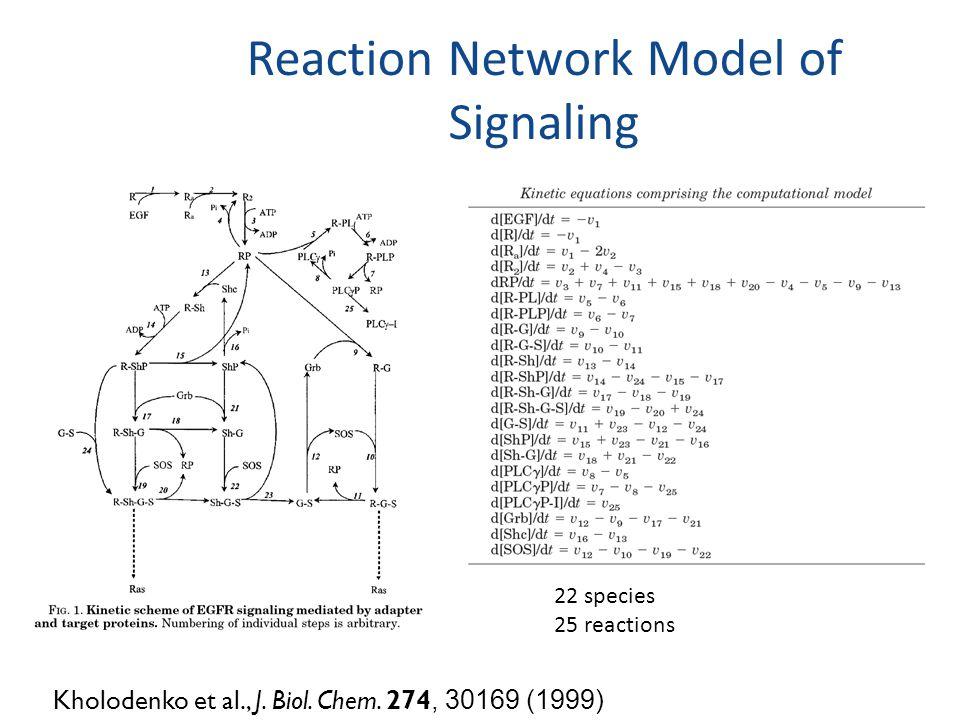 Reaction Network Model of Signaling Kholodenko et al., J.
