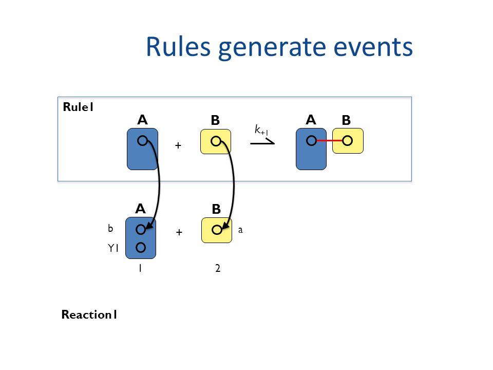 Rules generate events A B + k +1 A B Rule1 A b Y1 B a + Reaction1 12