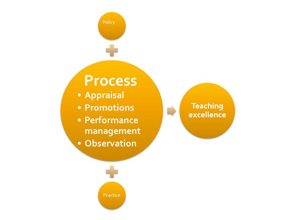 Policy Process Appraisal Promotions Performance management Observation Practice Teaching excellence