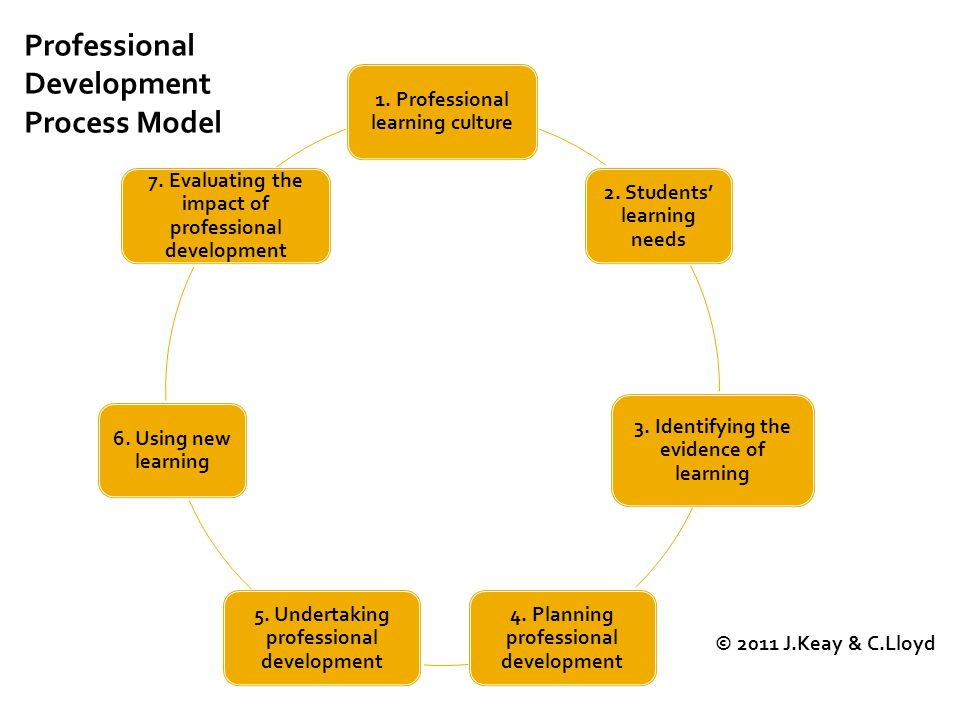 1. Professional learning culture 2. Students' learning needs 3.