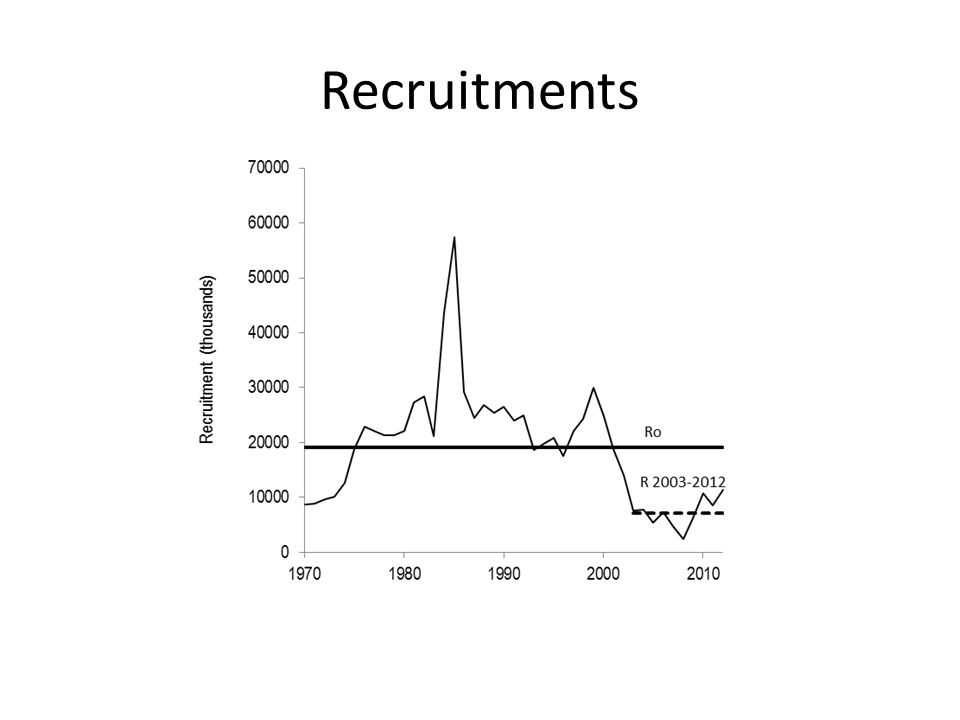 Recruitments
