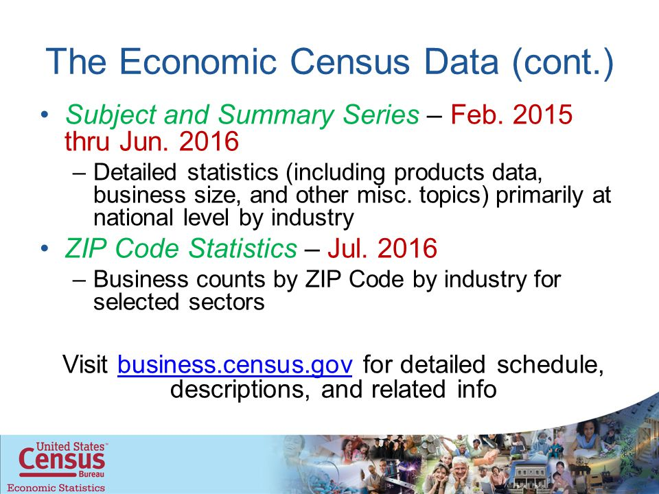 The Economic Census Data (cont.) Subject and Summary Series – Feb.