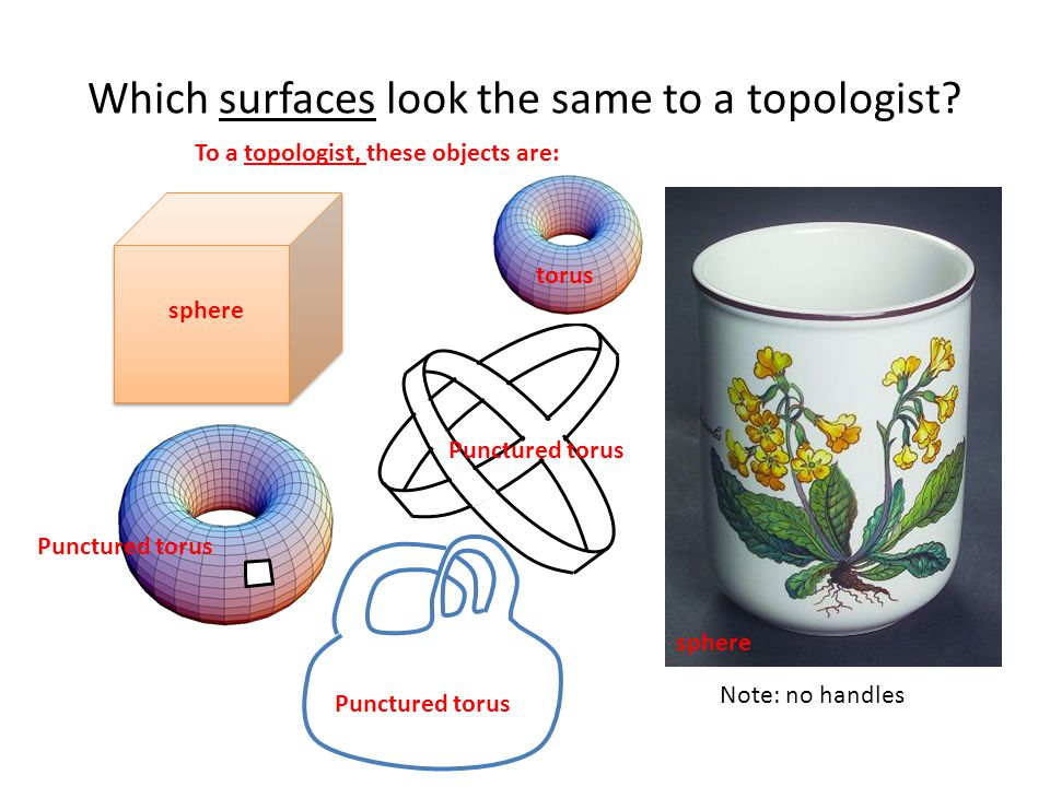 Which surfaces look the same to a topologist.