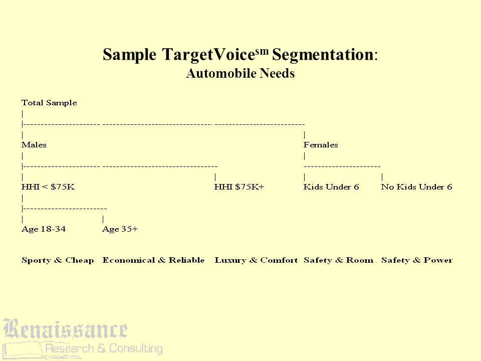 TargetVoice sm combines the best of both types of segmentation Yields clusters that are granular and rich in attitudinal detail At the same time, the clusters can be easily identified and addressed, because they are based on combinations of demographic and behavioral variables