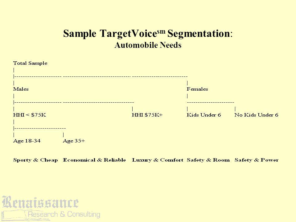Sample TargetVoice sm Segmentation: Automobile Needs