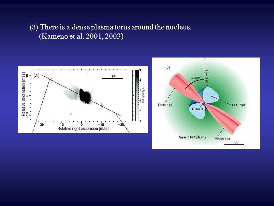 (3) There is a dense plasma torus around the nucleus. (Kameno et al. 2001, 2003)