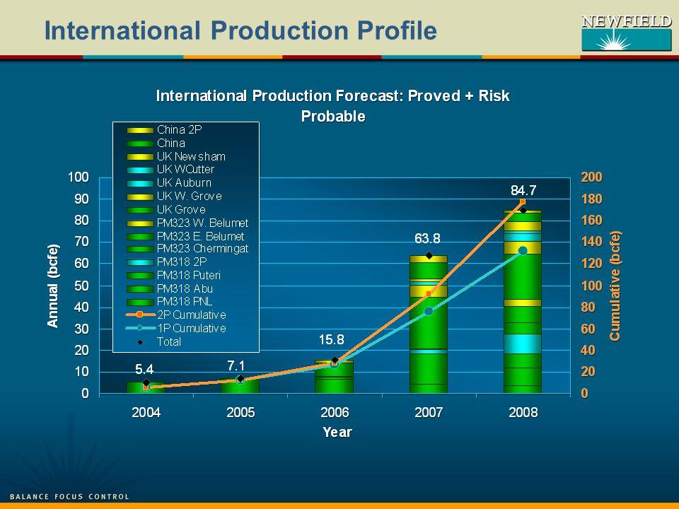 International Production Profile