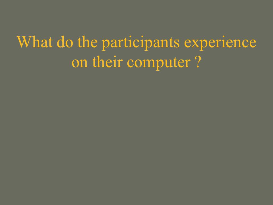 What do the participants experience on their computer