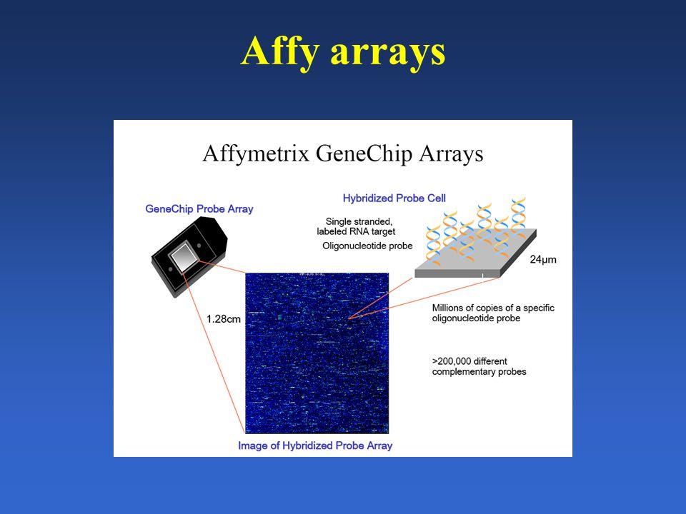 Affy arrays