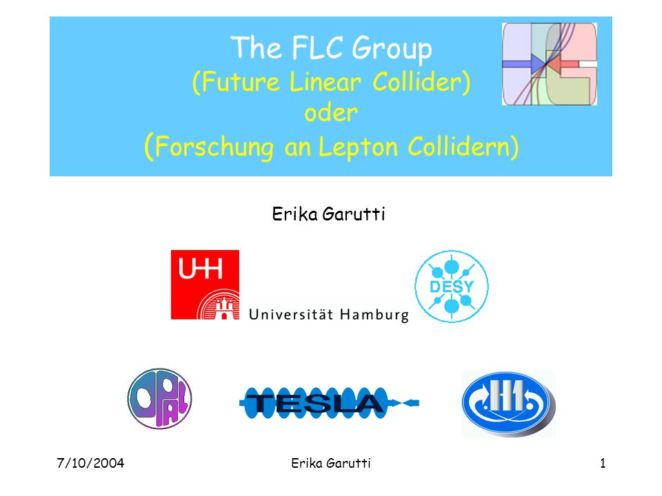 7/10/2004Erika Garutti1 The FLC Group (Future Linear Collider) oder ( Forschung an Lepton Collidern) Erika Garutti