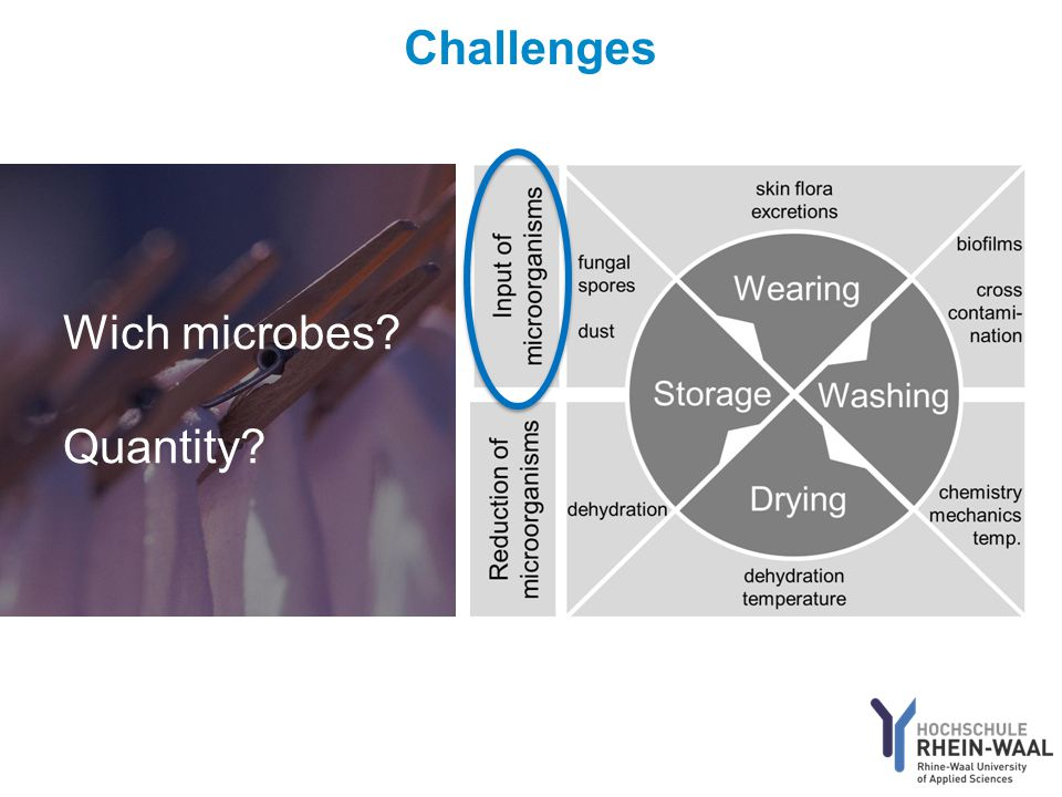 Wich microbes? Quantity?