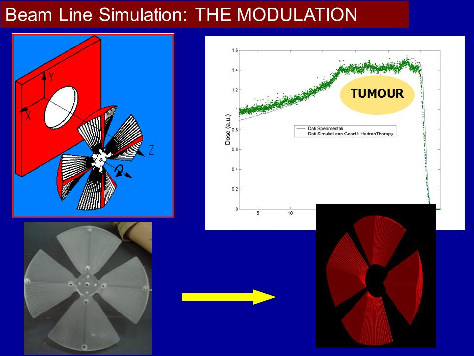 Beam Line Simulation: THE MODULATION TUMOUR
