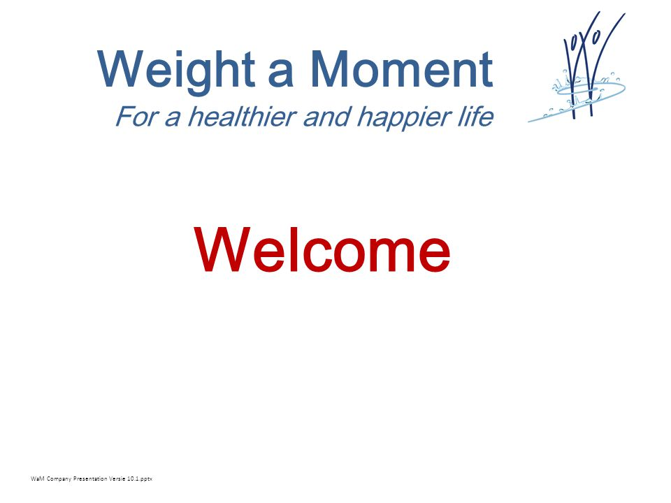 Weight a Moment For a healthier and happier life External funding 1.Subsidies 2.