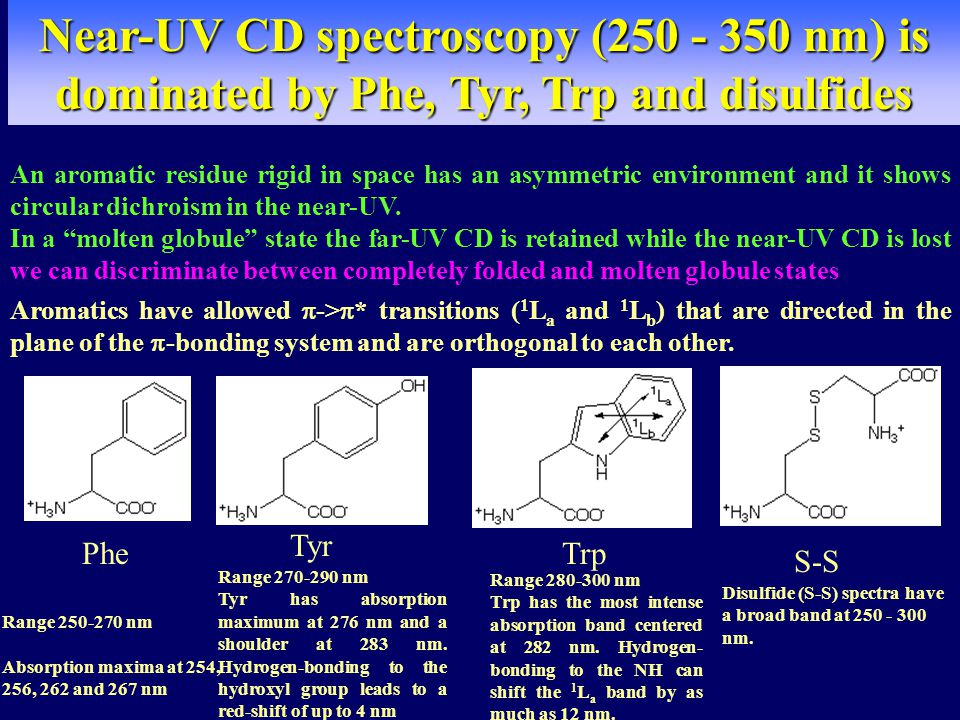 Near-UV CD spectroscopy (250 - 350 nm) is dominated by Phe, Tyr, Trp and disulfides An aromatic residue rigid in space has an asymmetric environment and it shows circular dichroism in the near-UV.