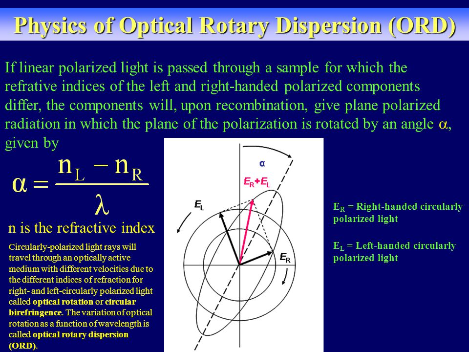 Physics of Optical Rotary Dispersion (ORD) If linear polarized light is passed through a sample for which the refrative indices of the left and right-handed polarized components differ, the components will, upon recombination, give plane polarized radiation in which the plane of the polarization is rotated by an angle , given by E R = Right-handed circularly polarized light E L = Left-handed circularly polarized light n is the refractive index Circularly-polarized light rays will travel through an optically active medium with different velocities due to the different indices of refraction for right- and left-circularly polarized light called optical rotation or circular birefringence.