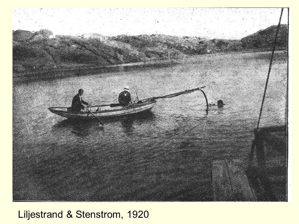 Liljestrand & Stenstrom, 1920