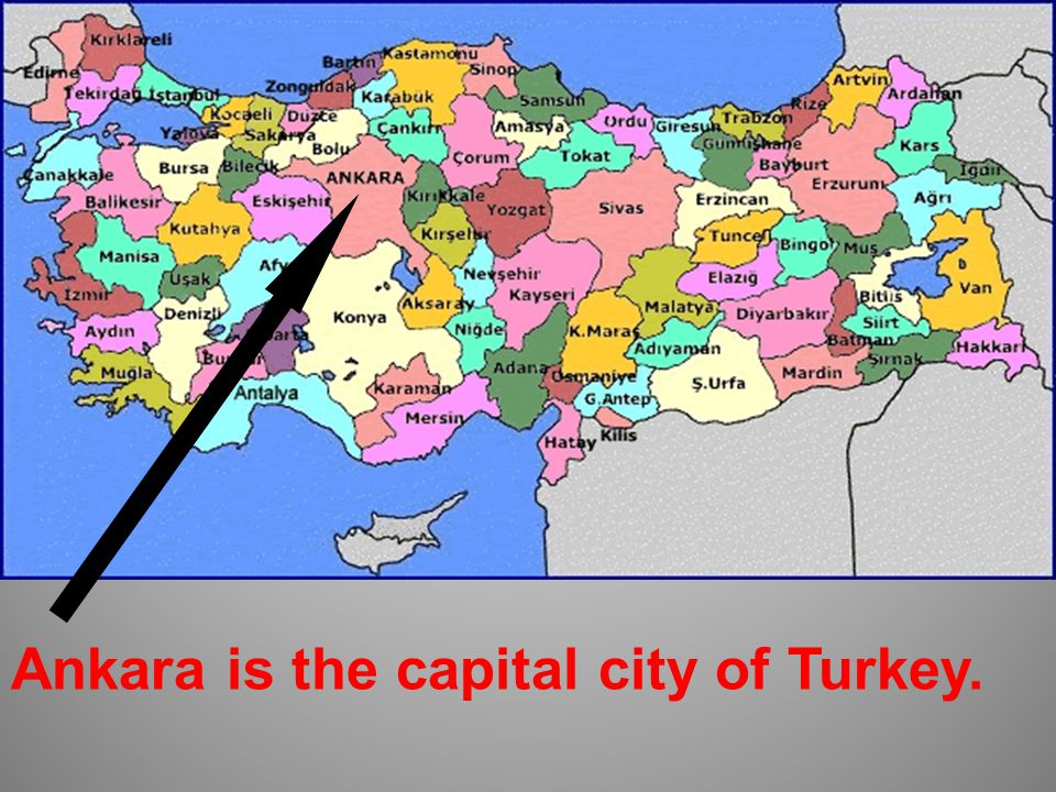 Marmara Region Aegean Region Southeastern Anatolia Region Central Anatolia Region Eastern Anatolia Region Black Sea Region Meditterranean Region