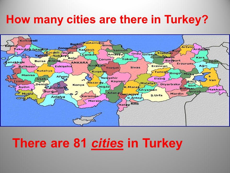 Ankara is the capital city of Turkey.
