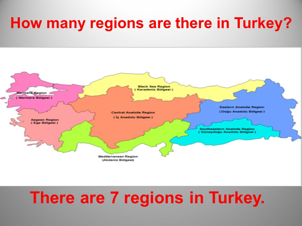 There are 81 cities in Turkey How many cities are there in Turkey?